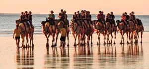 Camels Broome-6464